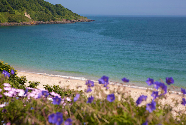 Escape to Carbis Bay